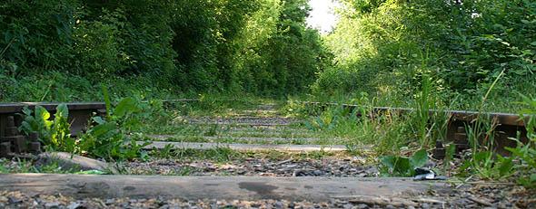 Залізнична колія (штрек) в підзамковому парку, Ужгород