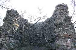 Королівський, Королевський замок Няляб